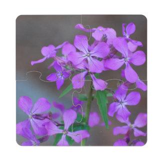 Flores púrpuras bonitas del Phlox Posavasos De Puzzle