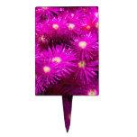 Flores púrpuras bonitas en la plena floración decoraciones para tartas