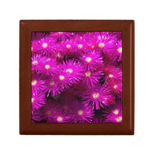 Flores púrpuras bonitas en la plena floración joyero cuadrado pequeño