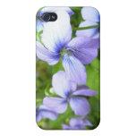 Flores púrpuras bonitas iPhone 4 coberturas