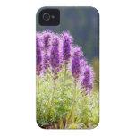 Flores púrpuras Case-Mate iPhone 4 cobertura