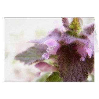 Flores púrpuras de Deadnettle Tarjeta De Felicitación