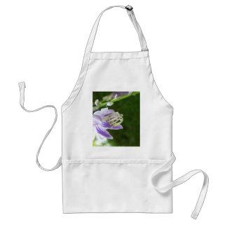 Flores púrpuras de la primavera de la lavanda de l delantal