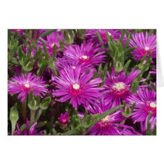 Flores púrpuras de Pigface Tarjeta De Felicitación