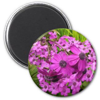 Flores púrpuras de San Francisco Imán Redondo 5 Cm
