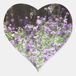 Flores púrpuras del desierto calcomanía corazón