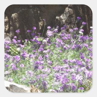 Flores púrpuras del desierto pegatina cuadradas personalizada