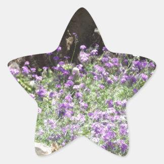 Flores púrpuras del desierto calcomanía cuadrada