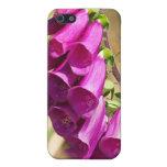 Flores púrpuras del Foxglove iPhone 5 Cárcasas