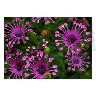Flores púrpuras del fuego artificial tarjeta de felicitación