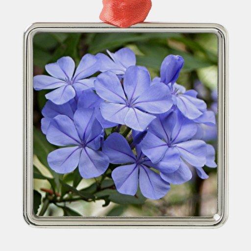 Flores púrpuras del grafito en la floración adorno cuadrado plateado