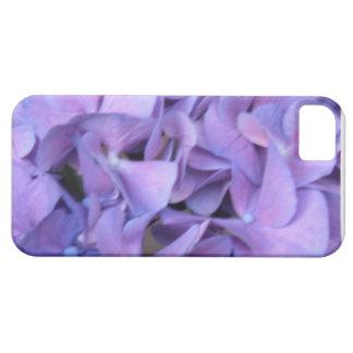 Flores púrpuras del Hydrangea