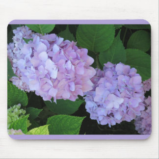Flores púrpuras del Hydrangea Tapetes De Raton