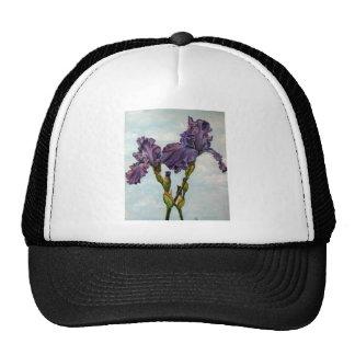 Flores púrpuras del iris barbudo gorro de camionero