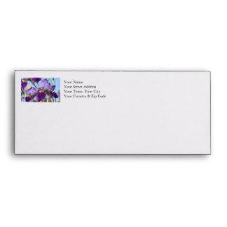 Flores púrpuras del iris sobres