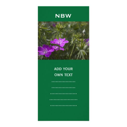 flores púrpuras del jardín del verano plantillas de lonas