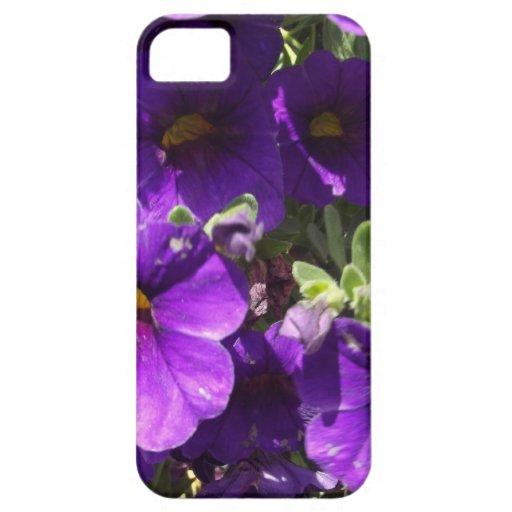 Flores púrpuras del jardín iPhone 5 carcasa