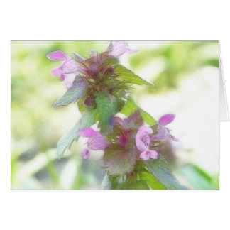 Flores púrpuras delicadas de Deadnettle Tarjeta De Felicitación