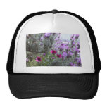 flores púrpuras en la yarda gorra