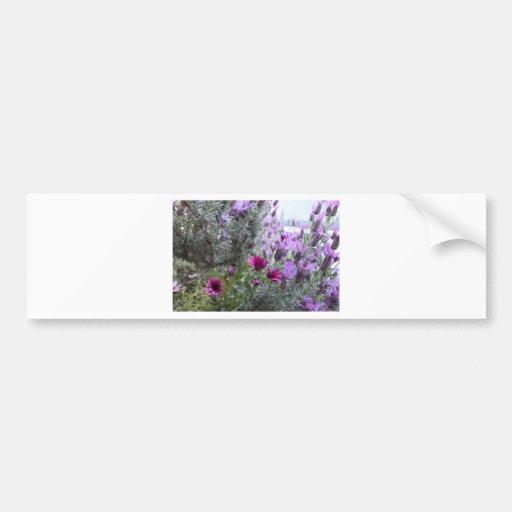 flores púrpuras en la yarda pegatina para auto