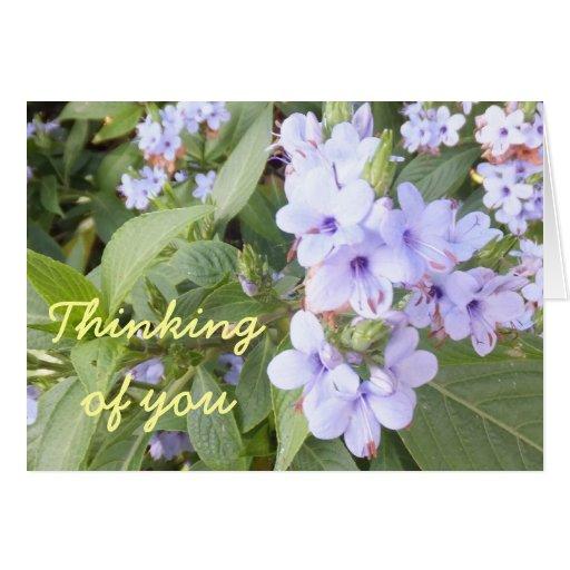 Flores púrpuras en las hojas verdes que piensan en felicitación
