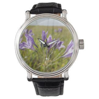 Flores púrpuras en un campo relojes de mano