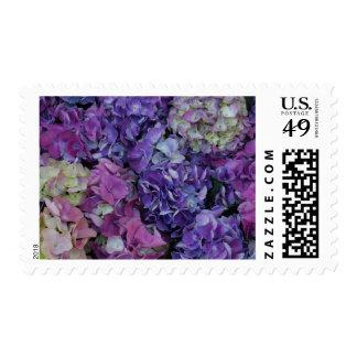 Flores púrpuras estampillas