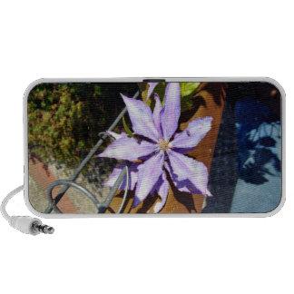 Flores púrpuras florecientes altavoces