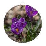 Flores púrpuras florecientes del azafrán de la pri tabla dardos