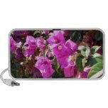 Flores púrpuras iPhone altavoz