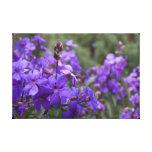 Flores púrpuras lona envuelta para galerías