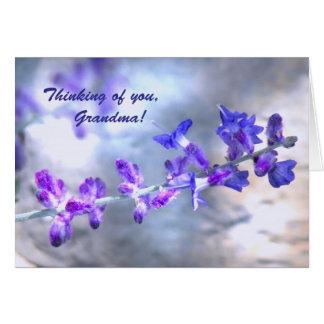 Flores púrpuras para el cumpleaños de la abuela tarjeta de felicitación
