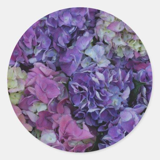 Flores púrpuras pegatina