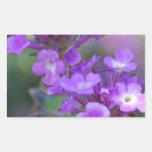 Flores púrpuras pegatina rectangular