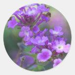 Flores púrpuras pegatina redonda