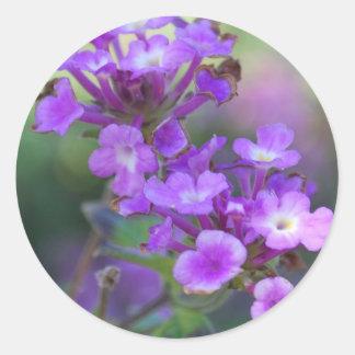 Flores púrpuras pegatinas redondas