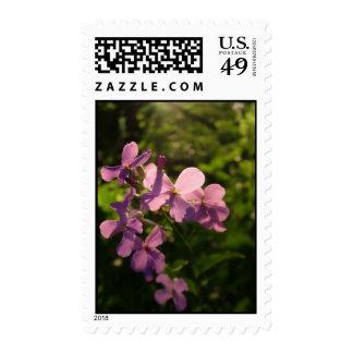 Flores púrpuras sello