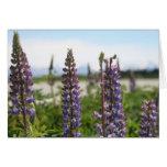 flores púrpuras tarjeta de felicitación