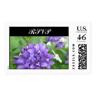 Flores púrpuras y blancas RSVP que casa el sello