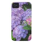 Flores púrpuras y rosadas del Hydrangea iPhone 4 Fundas