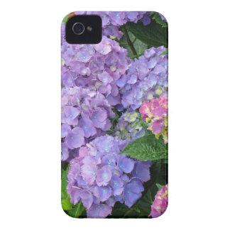 Flores púrpuras y rosadas del Hydrangea Funda Para iPhone 4 De Case-Mate