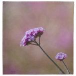 Flores púrpuras y rosadas macras servilletas