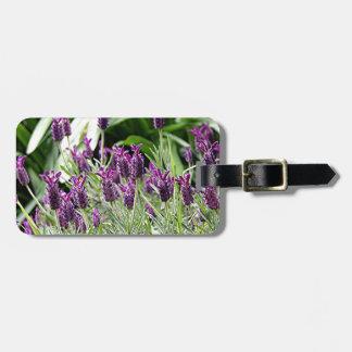 Flores púrpuras y verdes de la lavanda en la flora etiqueta de equipaje