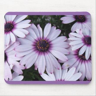 Flores purpúreas claras con el fondo púrpura alfombrillas de ratón