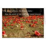 Flores que caen del árbol rojo del algodón de seda tarjetas