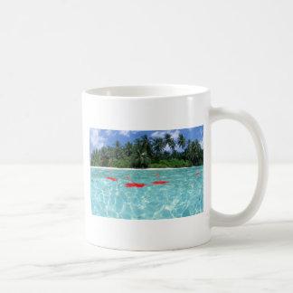 Flores que flotan en el agua - gran idea para un taza clásica