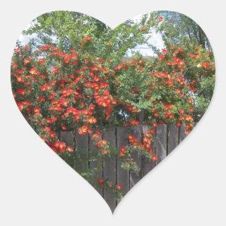 Flores que suben la cerca pegatina en forma de corazón