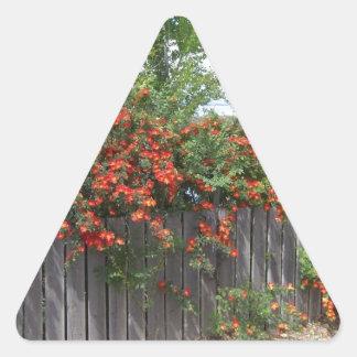 Flores que suben la cerca pegatina triangular