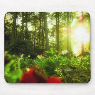 Flores que toman el sol alfombrilla de ratón
