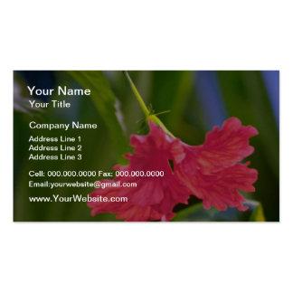 Flores rizadas rojo de la flor plantillas de tarjetas personales